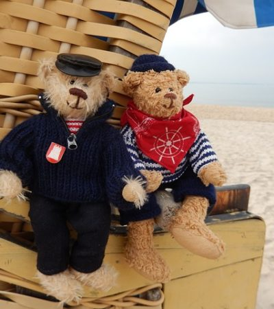 Bear on the beach & teddy fear